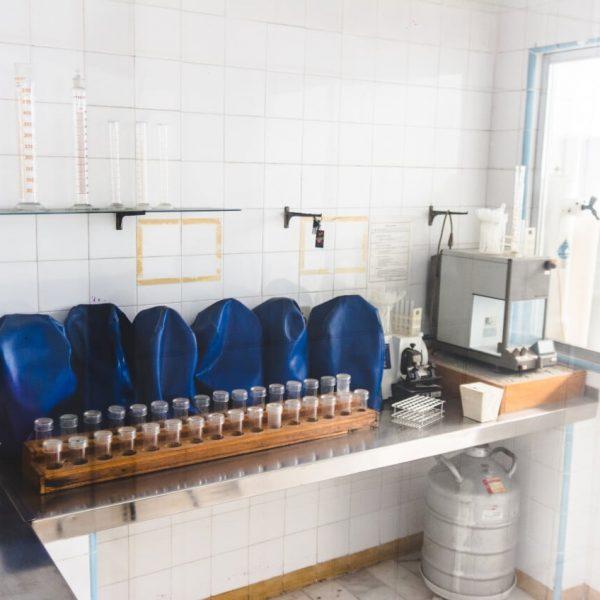 frasce-laboratório